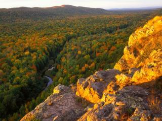 обои Краски осеннего леса фото