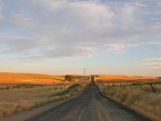 обои Асфальтированная дорога и поля у обочины фото
