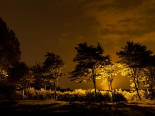 обои Вечерний сквер с фонарями фото