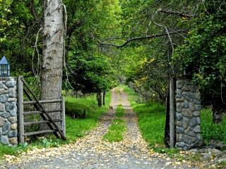 обои Ворота и дорога ведущая в парк фото