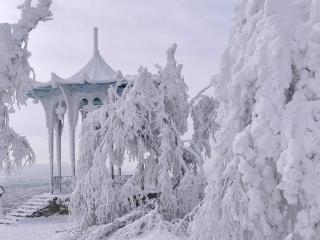 обои Краса зимний природы фото