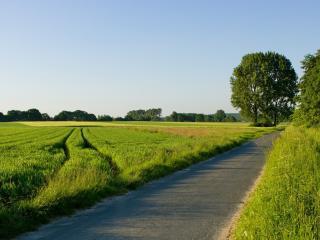 обои Дорога  и поля фото