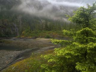 обои Пасмурная погода у реки в горной месности фото