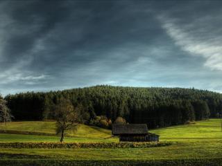 обои Постройка у леса фото