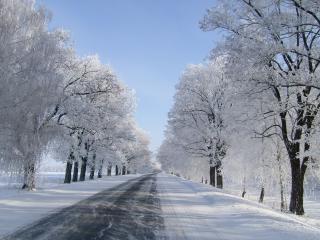 обои На дороге сухая зимняя погода фото