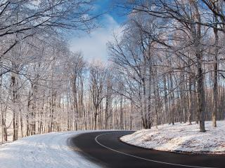 обои Вираж зимней дороги фото