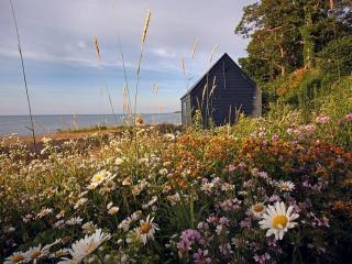 обои Маленький домик на берегу залива фото