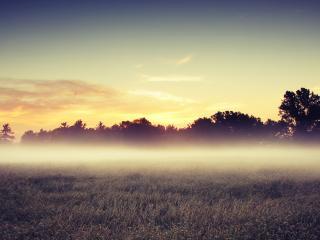 обои Вечерний туман над полем,   на закате фото