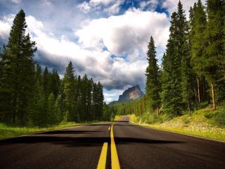 обои Дорога в горах чудесным летним днем фото