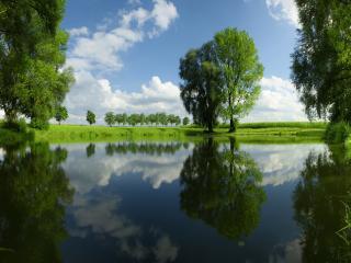 обои Лето,   озеро среди полей,   зелень фото