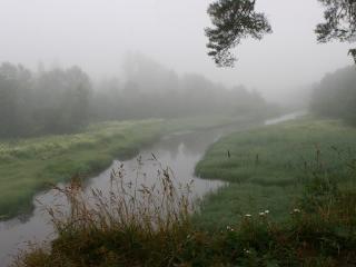 обои Туман над рекой и лесом фото