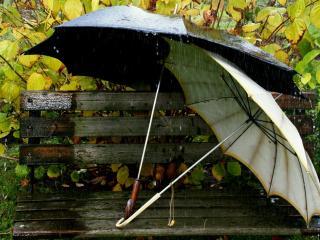 обои Дождливой погодой зонтики на лавочке фото