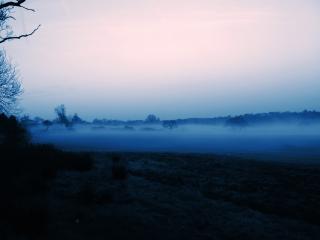 обои Над полем туман фото