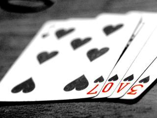 обои Любовь к азартным играм фото