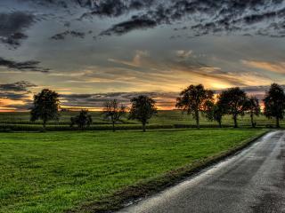 обои Хмурое небо и мокрая дорога фото