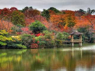 обои для рабочего стола: Осенний  лес и беседка в озере
