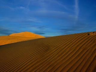 обои Рисунок ветра на желтом песке фото