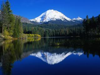 обои Тихая погода у лесного озера фото