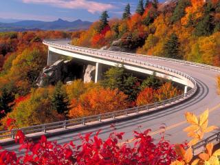 обои Виражи дороги в лесных горах фото