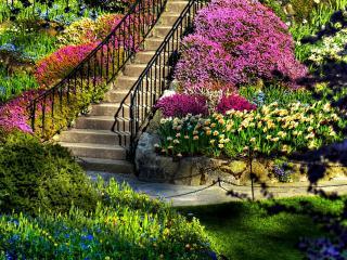 обои Ступеньки на склоне обсаженном цветами фото