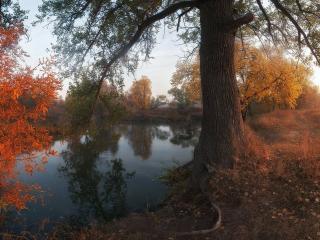 обои Осень у реки фото