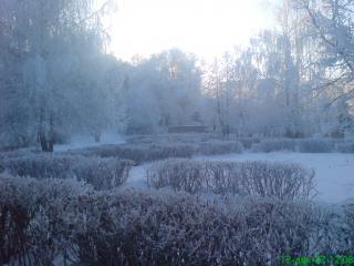 обои Замерзший зимний пруд фото