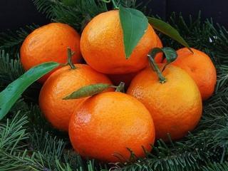 обои для рабочего стола: Семь сладких мандаринок