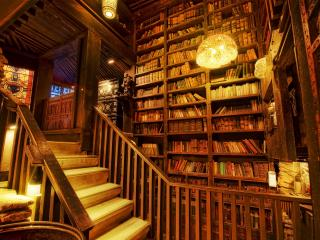 обои Библиотека фото