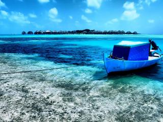 обои Пришвартована лодка у берега фото