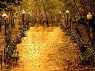обои Осенние фонари фото