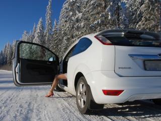 обои Ford focus,   лес,   снег и дорога фото