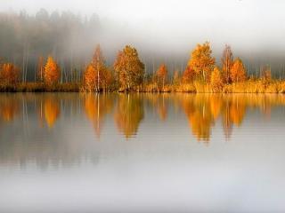 обои Осень,   озеро,   туман фото