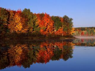 обои Отражение в озере природы и неба фото