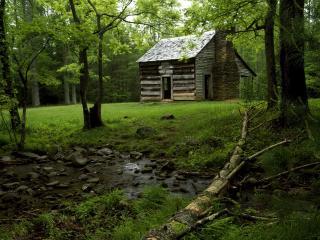 обои Заброшенный домик на опушке лесной фото