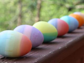 обои Ряд яиц крашенных фото