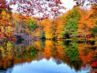 обои Осенняя тишина фото