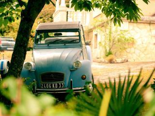 обои Старый автомобиль под деревом фото