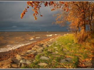 обои Балтийская осень фото