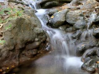 обои Осенний ручей на камнях, крупным планом фото