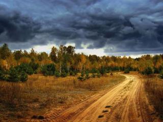 обои Грунтовая дорога в осенний лес фото