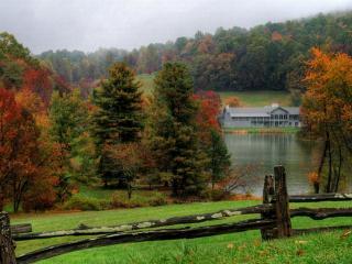 обои Дом и осенний лес в пасмурный день фото
