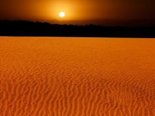 обои Желтый песок на закате фото