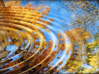 обои Осенние волны фото