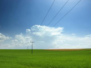 обои Провода над зеленым полем фото