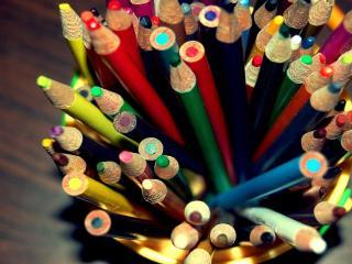 обои Разноцветные карандаши в кружке фото