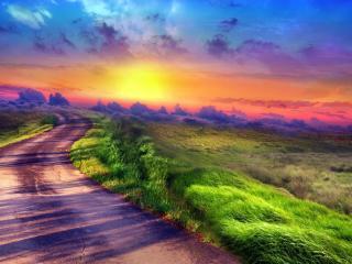 обои Зеленая трава на обочине извилистой дороги фото