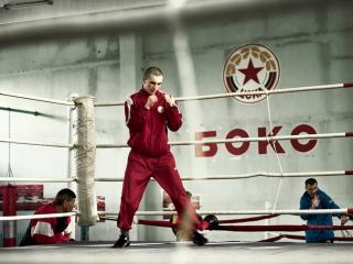 обои Тренировка у боксеров фото
