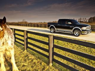 обои Автомобиль у загона с лошадьми фото