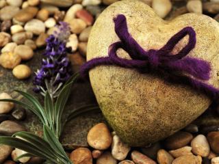 обои Перевязанный камень в виде сердца и цветок фото