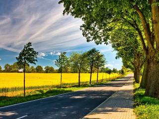 обои Дорога с тротуаром у одной стороны фото
